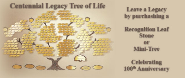 Purchase Tree of Life HERE